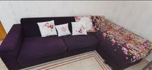 Purple Sofa Coach for Sale