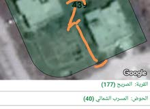 قطعة ارض للبيع بسعر مغري الصريح المسرب الشمالي