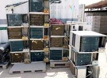 we are buying damage AC and copper Taipei iskarp