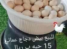 للبيع بيض دجاج عماني محلي
