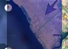 ارض على البحر شمال برج الوليد