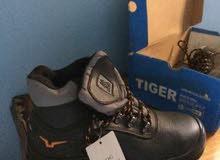 حذاء سفتى ماركة دوج جديدماركة مدهشة