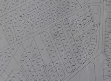 ارض للبيع ضاحية المدينة المنورة