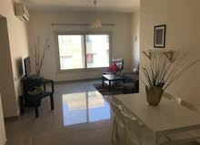 new apartment is up for rent in Cairo