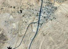 62 acre for sale in Al Hasan Tafila