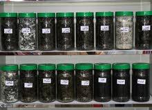 اجود انواع الدخون العماني الاصلي من الميزان