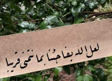 مدرسة لغة عربية وتربية اسلامية