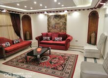 apartment for rent More than 5 in Cairo - Nasr City