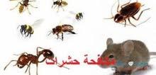 شركة مكافحة الحشرات والتعقيم والتطهير