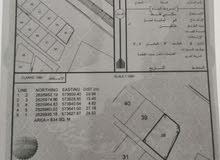 للبيع ارض في ولاية بركاء منطقة الصريمة