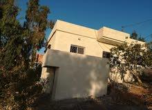 بيت مستقل مفروز على دونم من المالك قريب من اوتوستراد عمان اربد