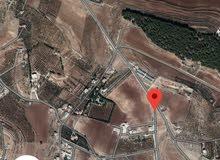 أرض 500م للبيع ناعو ابو العساكر على نفس شارع مطعم با بليون