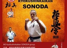 Full contact karate ( Kyokushin karate )