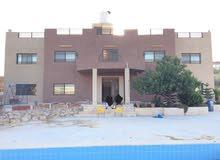 شاليه مع مسبح للبيع في منطقة المجدل مع ارض 3.8 دونم
