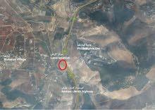 أرض للايجار او الاستثمار: اوتستراد عمان - جرش  مقابل جامعة فيلادلفيا تقاطع الرمان
