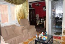 شقة 70 متر للايجار قانون قديم بالزيتون من شارع سليم