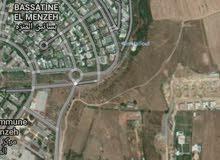 ارض 8 هكتارات مخصصة للفيلات طريق زعير المنزه الرباط