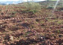 ارض للبيع في جبال الاطلس الكبير منظر التلوج والهدوءوالطبيعة الخلابة روعة