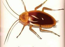 الافضل لخدمات تنظيف المباني ومكافحة الحشرات