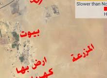 ارض زراعية فى شمال السودان فى الحوض الخامس قسم عشر