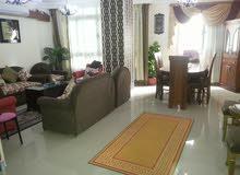 شقة مفروشة للايجار  للاسر او للتمليك بالمندرة بحر شارع ماك وجيلاتى عزة