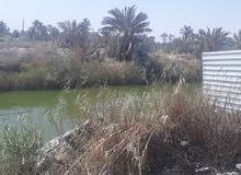 apartment for sale Ground Floor directly in Abu Al-Khaseeb