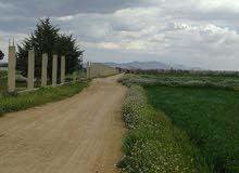 أرض للآجار في خان الشيخ