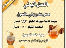 عسل سدر جبلي (يمني)