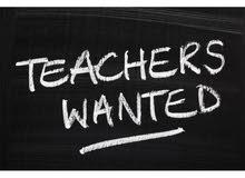 german DaF teacher gesucht