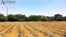 ارض مميزة للبيع في اجمل مناطق الشونة الجنوبية , مساحة الارض 37,800م