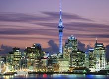 نيوزيلندا من غير حضور شخصي