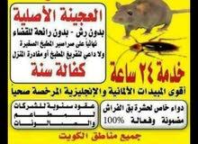 مكافحة حشرات وقوارض با قوي المبيدات المرخصه من وزارة الصحة با رخص الأسعار