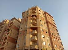 شقة 196م بالقرب من كارفور سيتى المعادى بتسهيلات فى السداد    e