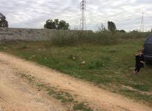أرض سكنية مساحة 350م في الكحيلي