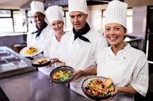 للراغبين بالتعلم والعمل بالمطبخ الفندقي