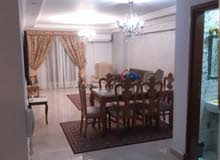 Fourth Floor apartment for rent - Mohandessin