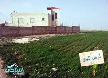 قطعة ارض مميزة في منطقة اللبن الجديدة للبيع على طريق المطار حوض ابو دبوس