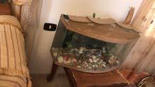 حوض سمك اجنبي حجم كبير للبيع لا يوجد به اي خدوش بحاله الجديد مع احجار الزينه وفل