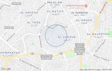 أرض مميزة جدا للبيع مساحة 400م/ ربوة عبدون 1