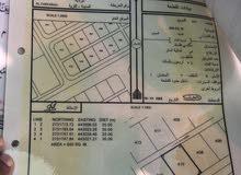 ارض للبيع في شناص (الفرفاره ) المساحة  600متر مربع مطلوب  8500ريال