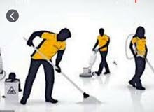 Hourly Charged Best Professional Cleaning Service
