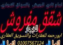 شقه مفروش للايجار في محافظة السويس ويوجد شقق مفروش اخر