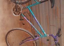 دراجه سباق وارد  ايطاليا