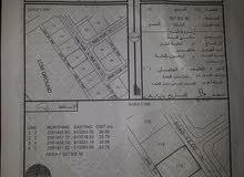 ارض للبيع في ولاية سمائل منطقة سرور