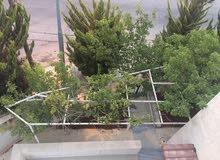 Ground Floor Apartment for Rent - Amman Abu Nusair