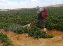 مزرعه 100 فدان بالعياط
