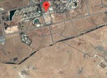 قطعة ارض للبيع بمساحة دونم و100 مترمن اراضي الرمثا ... السويدان الجنوبي