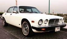 1982 Jaguar XJ6 in excellent condition