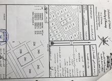 ارض سكنيه في شناص منطقة البليده غرب رقم الاراضي 241و239