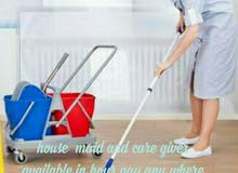 celening in hour care giver baby care